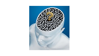 Image of maze inside a brain